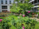 osma, foyer sainte marie, foyer étudiant, étudiante, résidence, paris, montparnasse, jardin